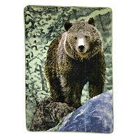 Bear on Rock Hi Pile Luxury Oversize Throw