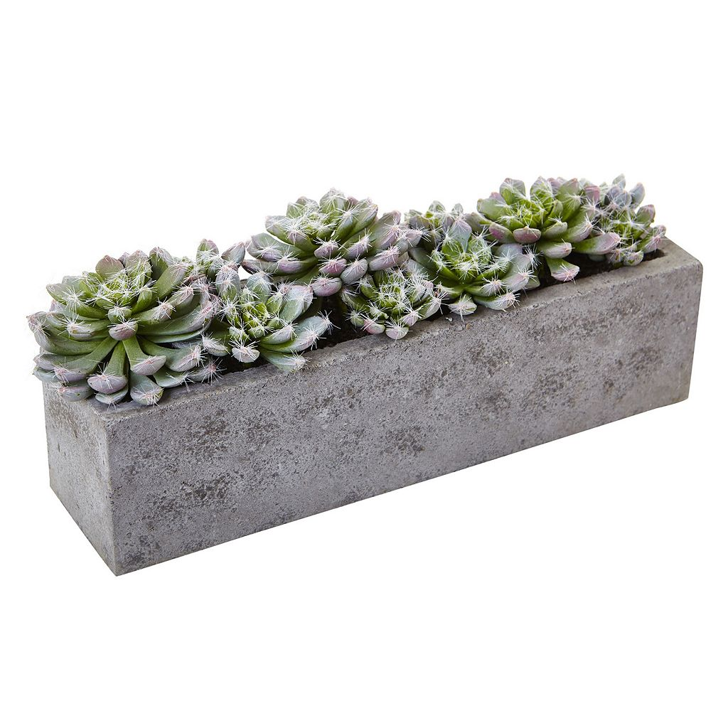 nearly natural Artificial Succulent Planter Arrangement