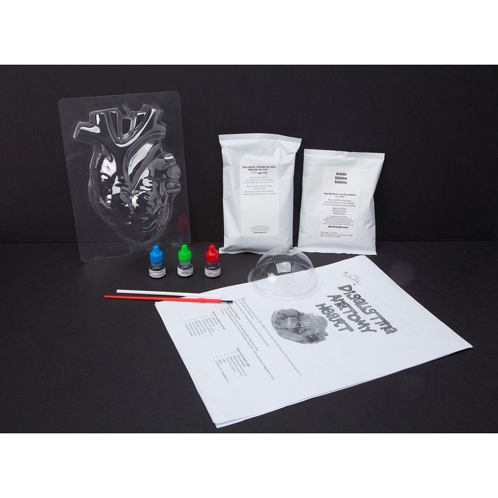 Scientific Explorer Disgusting Anatomy of the Heart Science Kit