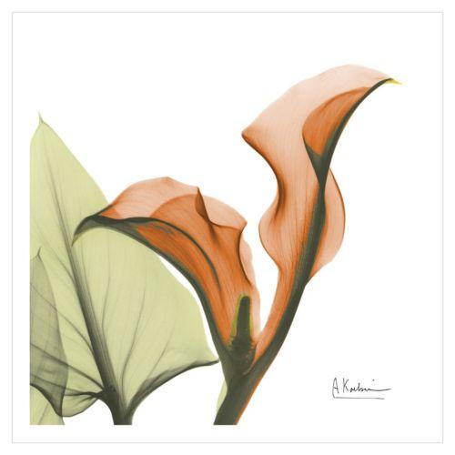 Art.com A Gift of Calla Lilies Wall Art Print