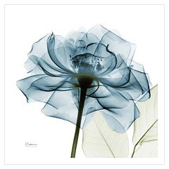 Art.com Blue Rose Wall Art Print