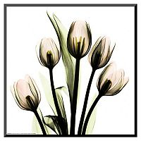Art.com Tulip Bouquet Framed Wall Art
