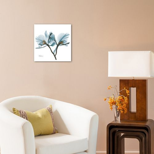 Art.com Orchids Wall Art Print