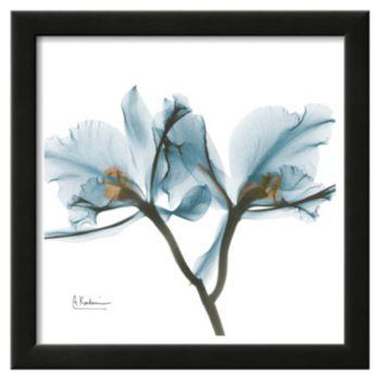 Art.com Orchids Framed Wall Art