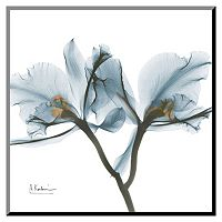 Art.com Orchids Thin Framed Wall Art