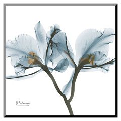 Art.com Orchids Thin Framed Wall Art