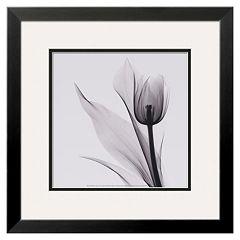 Art.com 'Tulip' Framed Wall Art