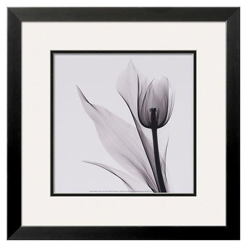 """Art.com """"Tulip"""" Framed Wall Art"""