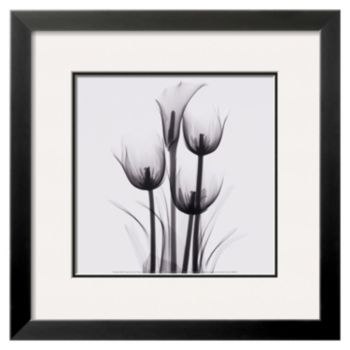 "Art.com ""Tulips and Arum Lily"" Framed Wall Art"