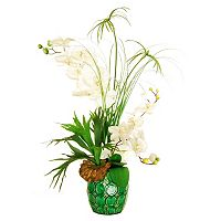 Designs by Lauren Artificial Phalaenopsis Orchid and Horn Plant