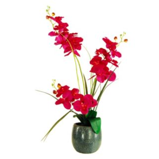 Designs by Lauren Artificial Red Phalaenopsis Orchid Plant