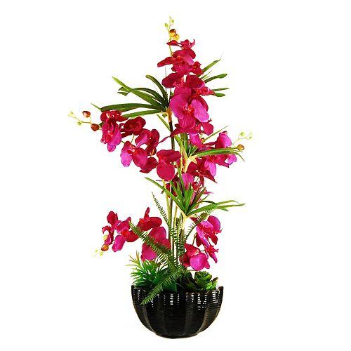 Designs by Lauren Artificial Phalaenopsis Orchid and Succulents Arrangement
