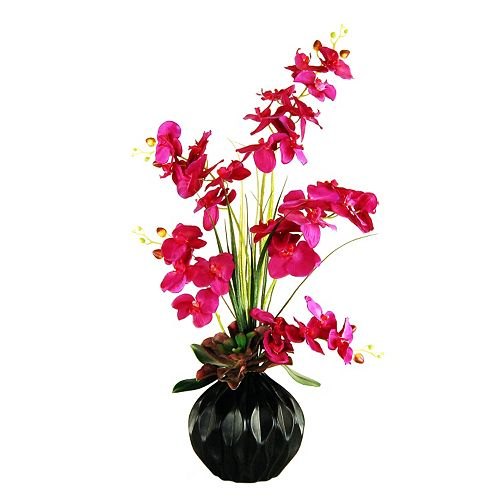 Designs by Lauren Artificial Phalaenopsis Orchid and Succulent Arrangement in Ceramic Vase