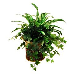 Designs by Lauren Artificial Greenery Arrangement