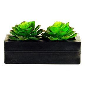 Designs by Lauren Artificial Succulent Arrangement