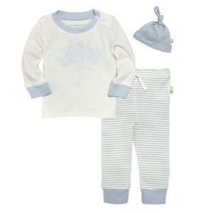 Baby Boy Burt's Bees Baby Organic Blue Graphic Tee & Pants Set