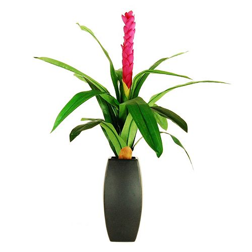 Designs by Lauren Artificial Ginger Torch Plant