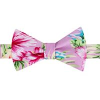 Men's Bow Tie Tuesday Novelty Self-Tie Bow Tie