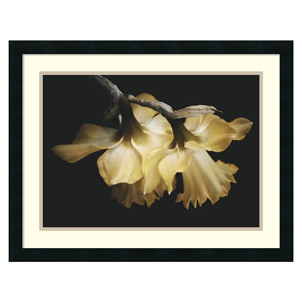 Amanti Art Sunning Daffodils Framed Wall Art