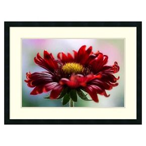Amanti Art Flame Floral Framed Wall Art