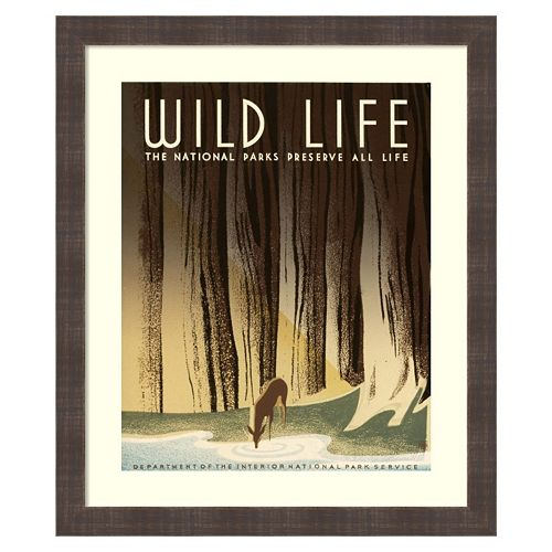 Amanti Art Wild Life Framed Wall Art