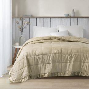 Madison Park 3M Premium Oversized Down Alternative Blanket
