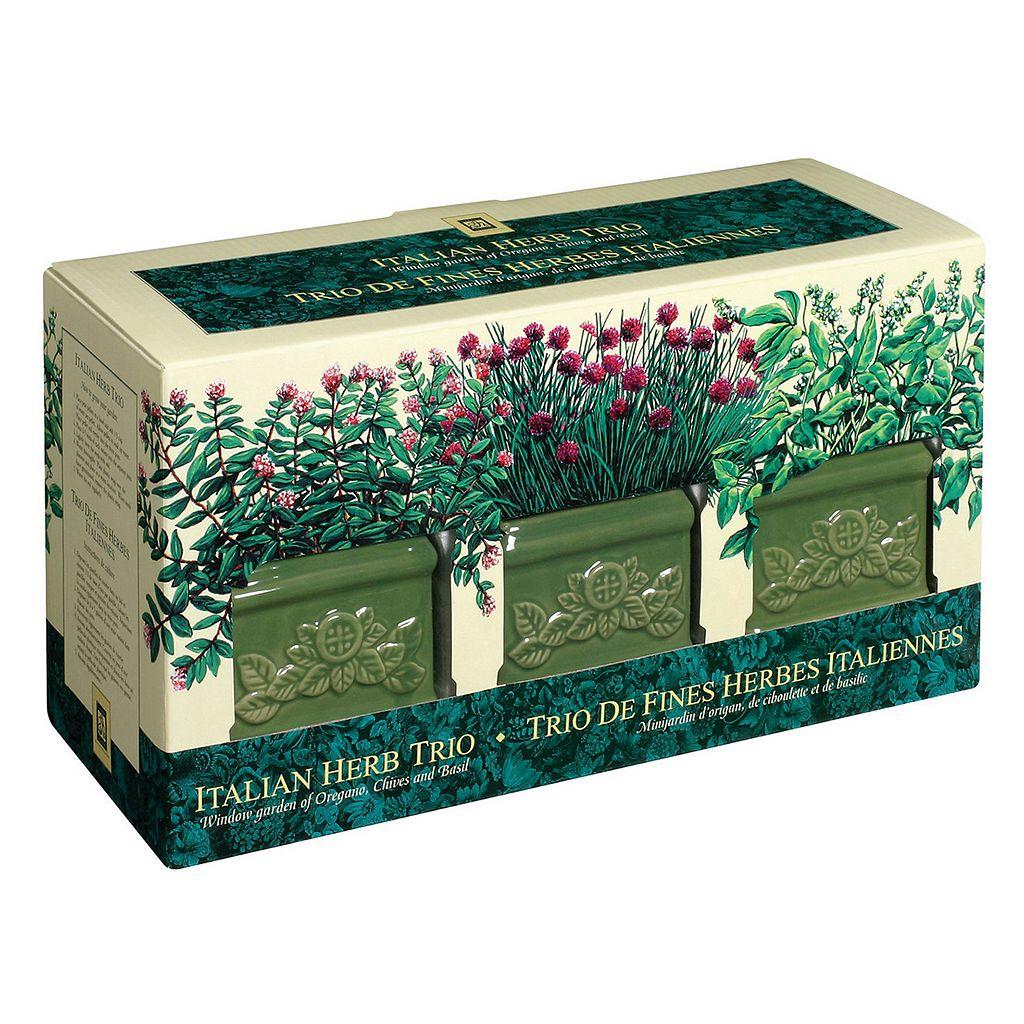 Toysmith Garden At Home Easy-To-Grow Italian Herb Set