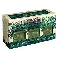 Toysmith Garden At Home Easy-To-Grow Italian Herb Set