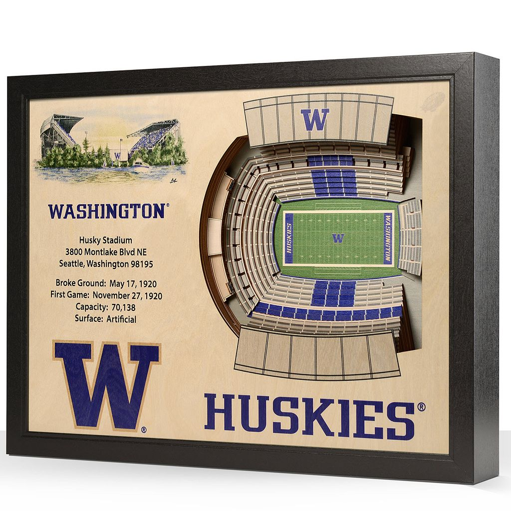 Washington Huskies StadiumViews 3D Wall Art