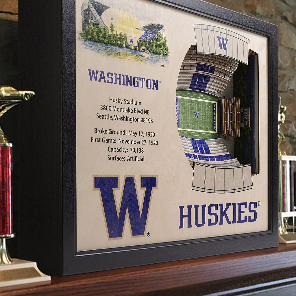 Washington Huskies StadiumViews 3D Wall Art