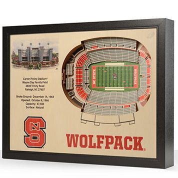 North Carolina State Wolfpack StadiumViews 3D Wall Art