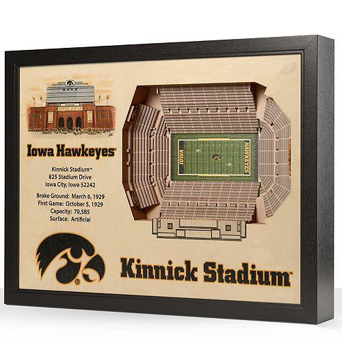 Iowa Hawkeyes StadiumViews 3D Wall Art