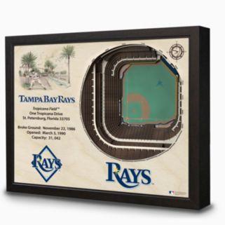 Tampa Bay Rays StadiumViews 3D Wall Art