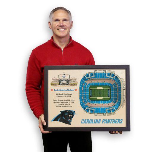 Carolina Panthers StadiumViews 3D Wall Art