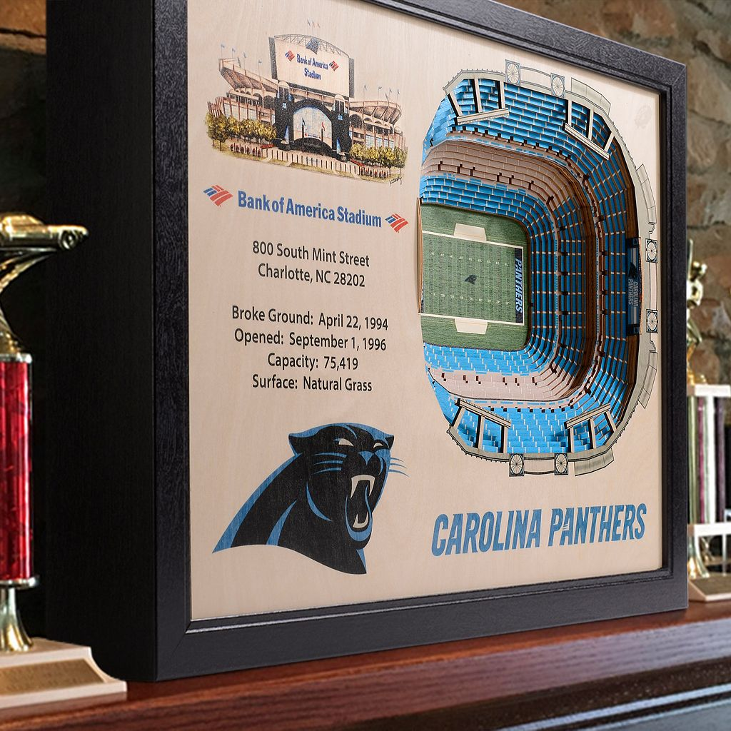 Carolina Panthers StadiumViews 3D Wall Art