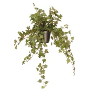 """National Tree Company 12"""" Garden Accents Artificial Hanging Ivy Plant"""