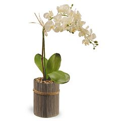 National Tree Company 20' Garden Accents Artificial Orchid Plant