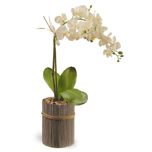 "National Tree Company 20"" Garden Accents Artificial Orchid Plant"
