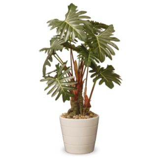 "National Tree Company 21"" Garden Accents Artificial Philodendron Plant"