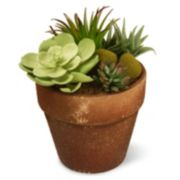 """National Tree Company 10"""" Garden Accents Artificial Succulent Plant"""