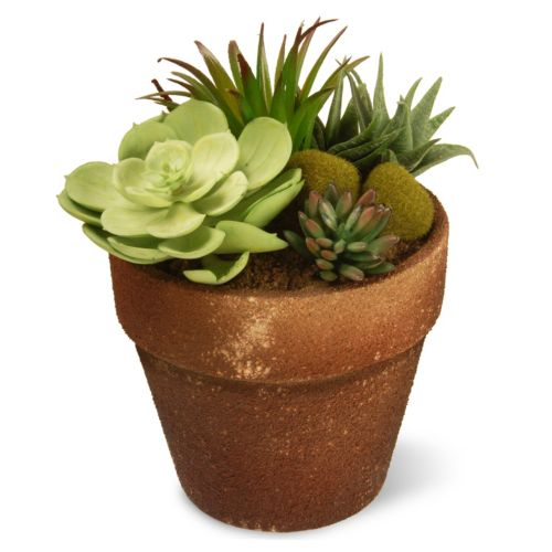 National Tree Company 10″ Garden Accents Artificial Succulent Plant