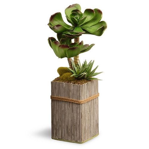 """National Tree Company 6"""" Garden Accents Artificial Succulent Plant"""