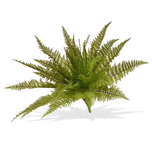 """National Tree Company 21"""" Garden Accents Artificial Ruffle Fern Plant"""