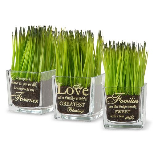 "National Tree Company ""Forever, Love, Families"" Artificial Sprout Glass Vase 3-piece Set"