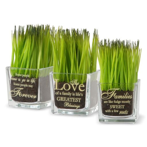 """National Tree Company """"Forever, Love, Families"""" Artificial Sprout Glass Vase 3-piece Set"""