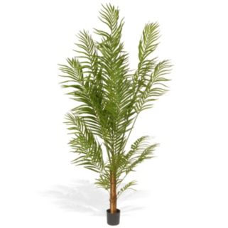 National Tree Company 6 Ft. Artificial Potted Areca Palm Tree