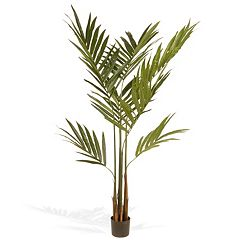 National Tree Company 6 Ft. Artificial Potted Kentia Palm Tree