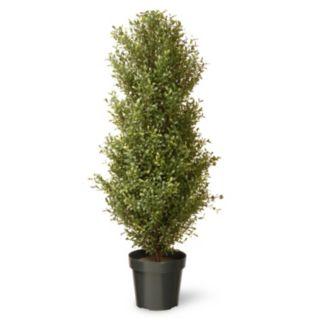 "National Tree Company 48"" Artificial Argentea Plant"