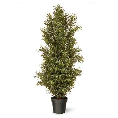 "National Tree Company 60"" Artificial Argentea Plant"