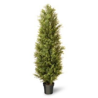"National Tree Company 72"" Artificial Argentea Plant"